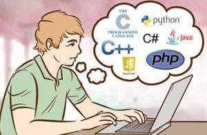 SW DEVELOPER .NET C# Interface Programming